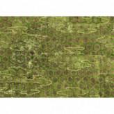 SOLEIL LEVANT-DE LAC EN LAC TP_285_02